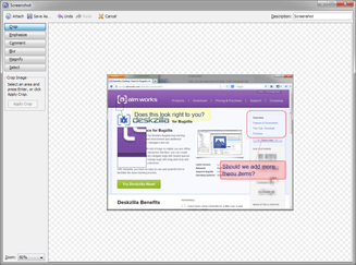 Screenshot Tool in Deskzilla