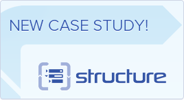 Case study on Structure in a financial institution